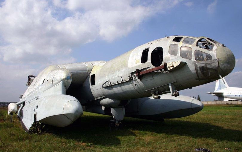 The Bertini Beriev VVA 14