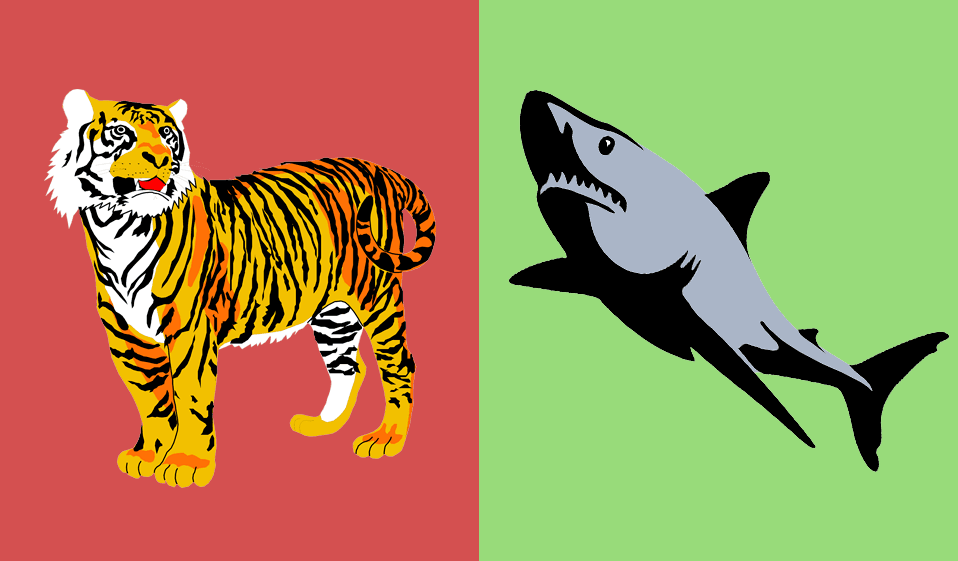 سمكة قرش ضد نمر