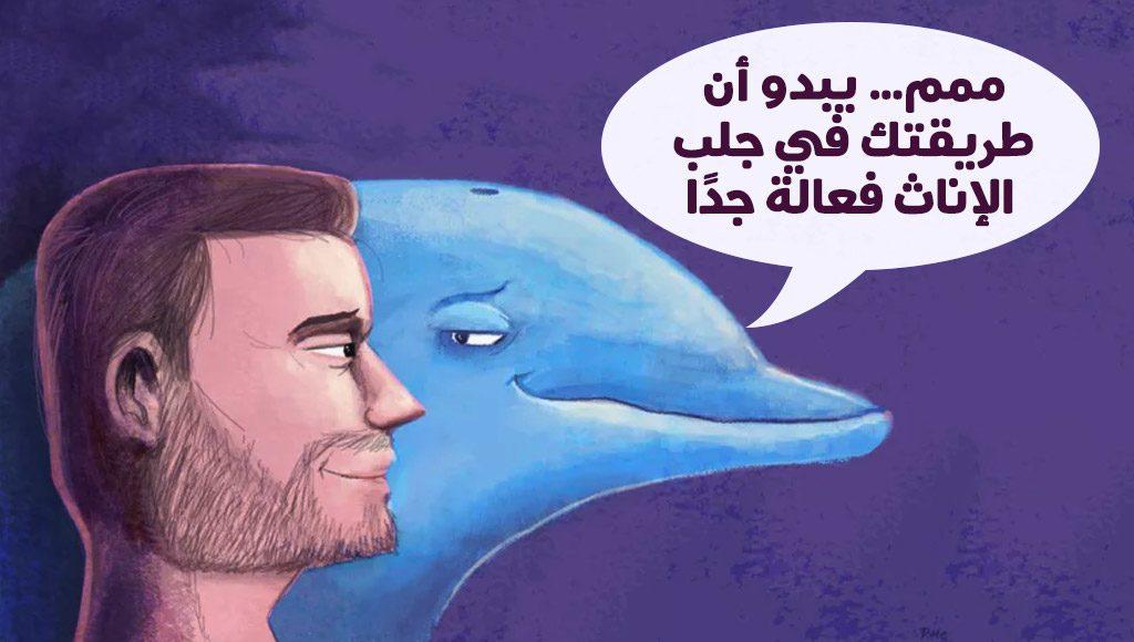 ذكور الدلافين الحدباء تقدم الهدايا للإناث من أجل ممارسة الجنس