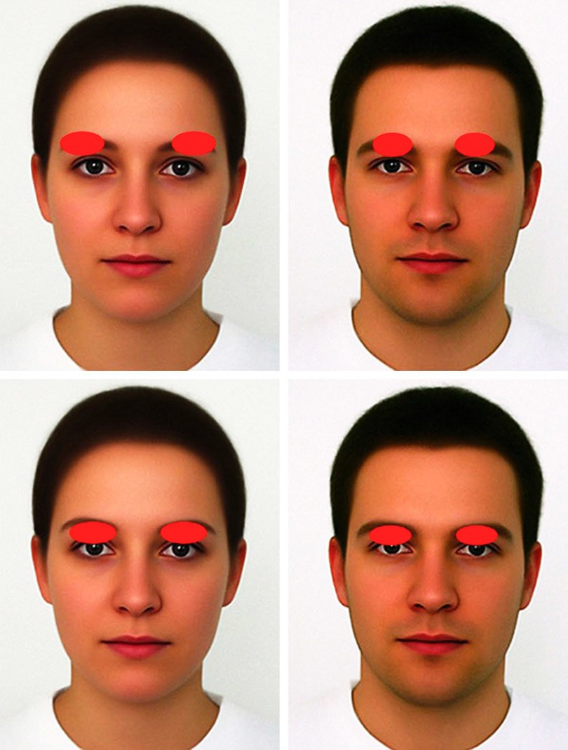 """Why does each face look like a small """"Neanderthal""""?"""