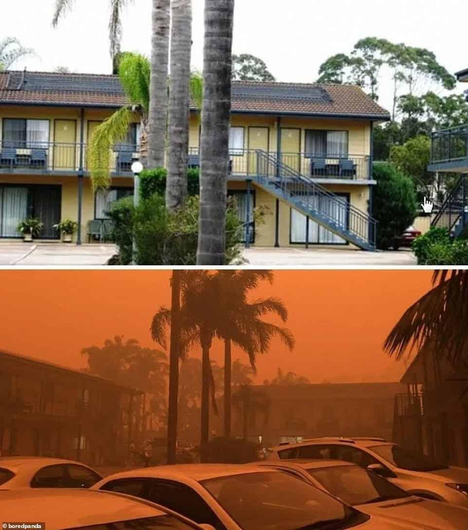 حرائق غابات أستراليا 2019