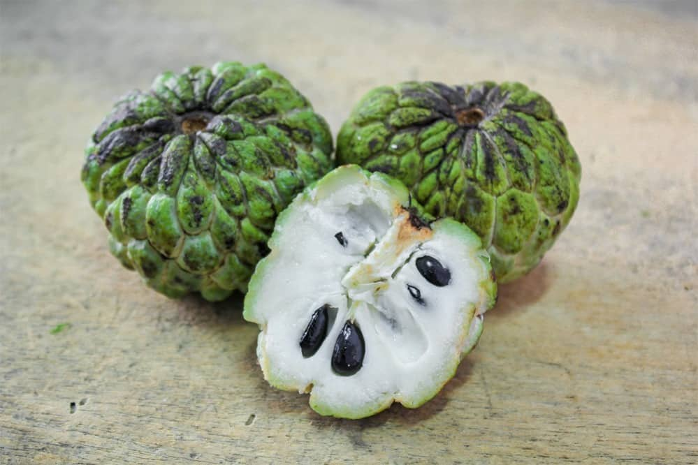 السفرجل الهندي اسم يطلق على ثمرة نبات القشطة الصدفية